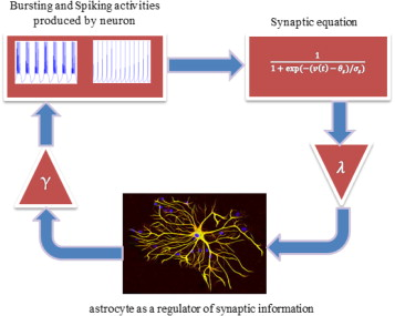 A digital implementation of neuron–astrocyte interaction for
