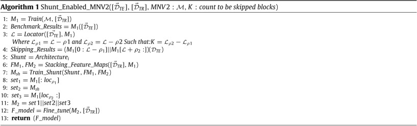 Shunt connection: An intelligent skipping of contiguous