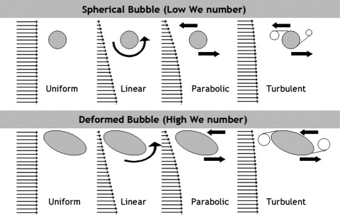 Horizontal Turbulent Channel Flow Interacted By A Single Large