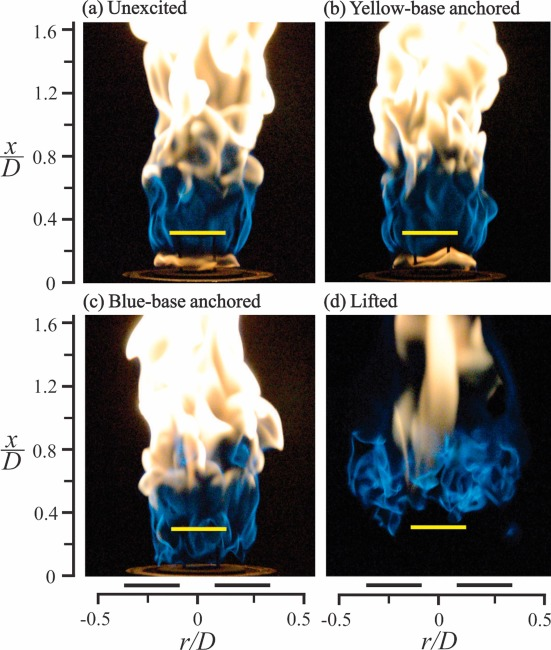 Effect of acoustic excitation on flames of swirling dual