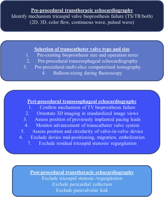 Transcatheter Tricuspid Valve-in-Valve Intervention for