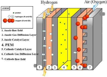 CFD simulation of PEM fuel cell performance: Effect of straight and
