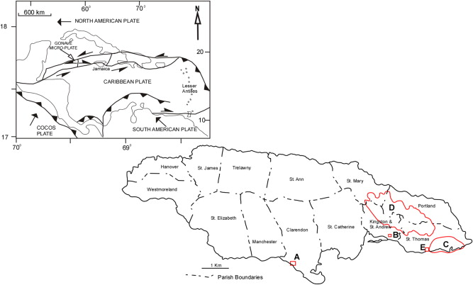 Tectonostratigraphic development of the Coastal Group of south