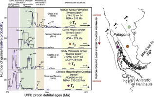 A review on the tectonic evolution of the Paleozoic-Triassic