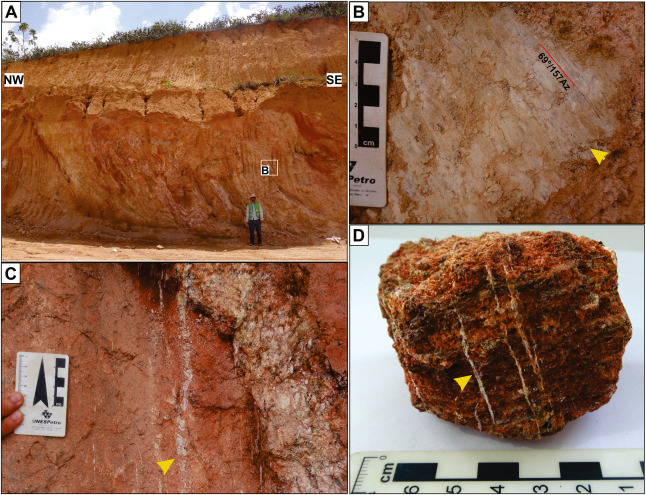 Early Evidence Of Pyrometamorphism And A Late Hydrothermal Alteration Related To Albian Volcanism In The Pernambuco Sedimentary Basin Northeast Brazil Sciencedirect