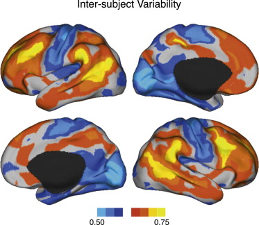 Individual Variability in Functional Connectivity Architecture of