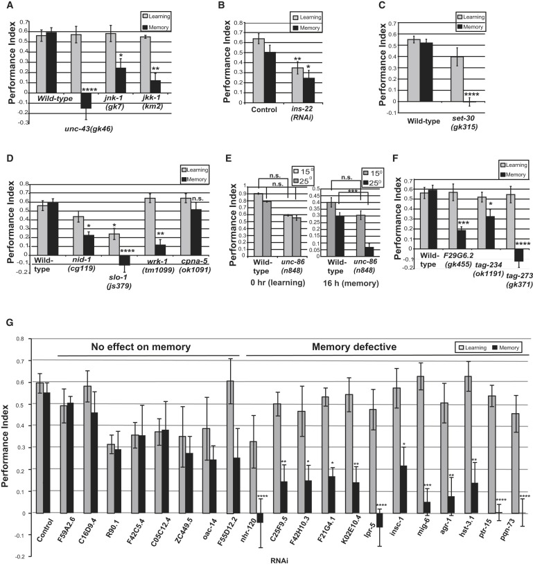 Genome-wide Functional Analysis of CREB/Long-Term Memory