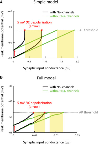 Persistent Sodium Current Mediates the Steep Voltage Dependence of