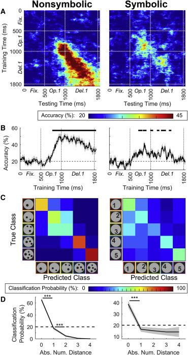 Single Neurons in the Human Brain Encode Numbers - ScienceDirect