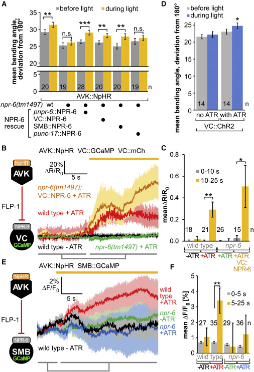 Food Sensation Modulates Locomotion by Dopamine and