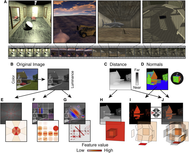 Human Scene-Selective Areas Represent 3D Configurations of