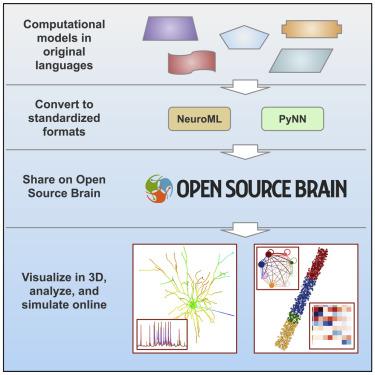 Neural network wikipedia.