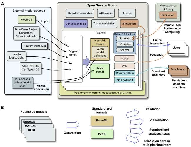 Open Source Brain: A Collaborative Resource for Visualizing