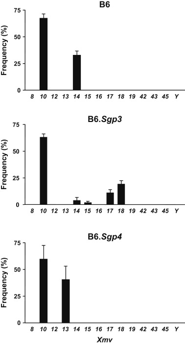 Sgp3 and Sgp4 control expression of distinct and restricted