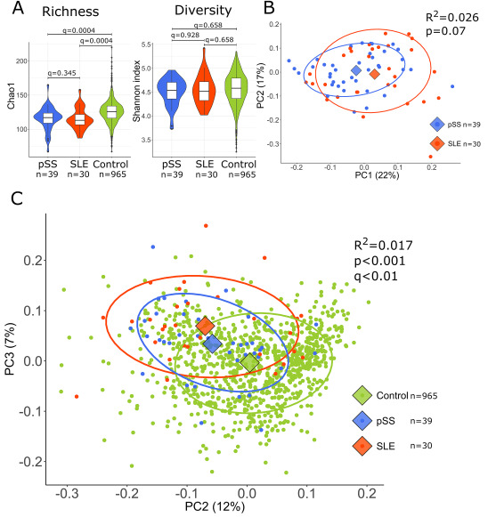 Shared gut, but distinct oral microbiota composition in