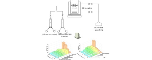 Hydrothermal Liquefaction Of Lignin In Near Critical Water In A New