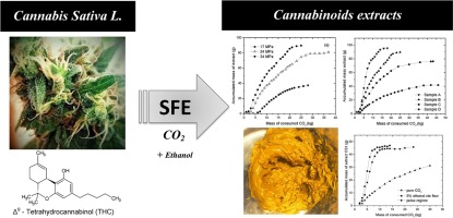 Supercritical carbon dioxide extraction of cannabinoids from