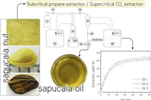 Assessment of subcritical propane, supercritical CO2 and