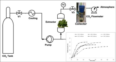 Supercritical CO2 extraction of bioactive compounds from