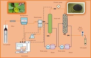 Properties of Portulaca oleracea seed oil via supercritical