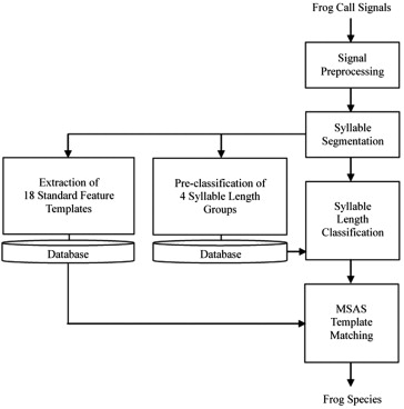 Automatic recognition of frog calls using a multi-stage average ...