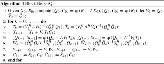 Block conjugate gradient type methods for the approximation