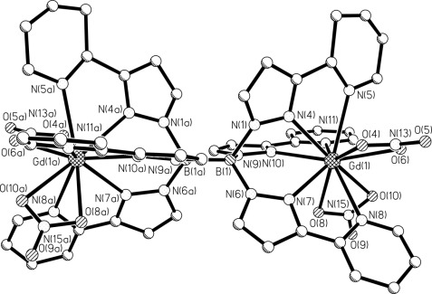 Potential Applications For The Use Of Lanthanide Complexes As