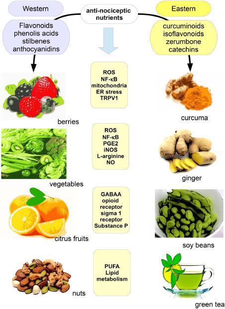 crps and vegan diet