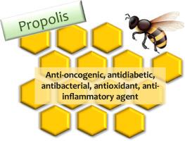 Propolis dn és prosztatitis