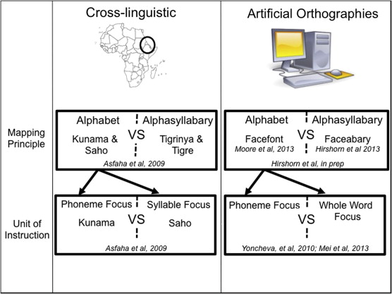Using artificial orthographies for studying cross linguistic download full size image fandeluxe Gallery