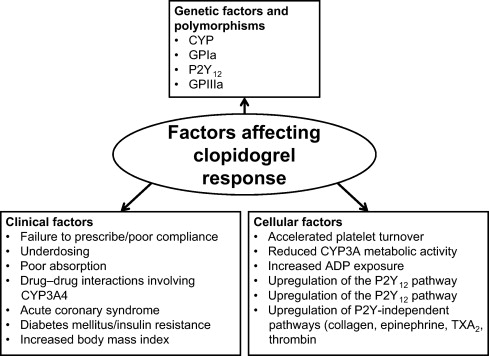 Current status and prospects of antiplatelet therapy in