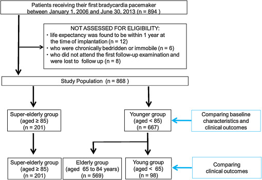 Prognosis Of Super Elderly Healthy Japanese Patients After