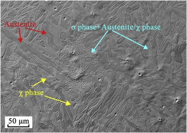 Phase transformations in reduced-activation duplex alloy