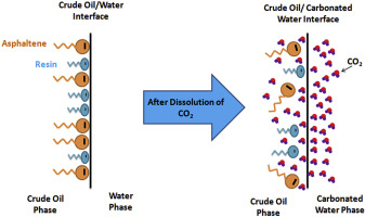 Effect of CO2 and natural surfactant of crude oil on the