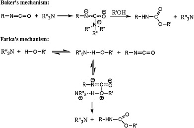 The role of catalysis in the synthesis of polyurethane foams based on  renewable raw materials - ScienceDirect