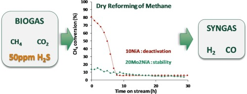 New molybdenum-based catalysts for dry reforming of methane in