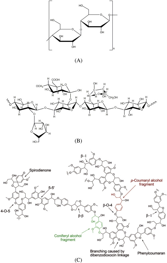 A Review On Thermal Chemical Reactions Of Lignin Model Compounds