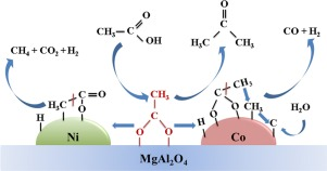 Steam reforming of acetic acid over MgAl2O4-supported Co and
