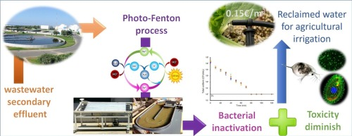 Wild bacteria inactivation in WWTP secondary effluents by