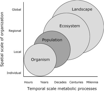 A multi level framework for metabolism in urban energy systems from fig 2 ccuart Images