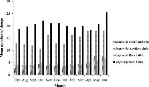 Flock dynamics, body condition and weight variation in sheep