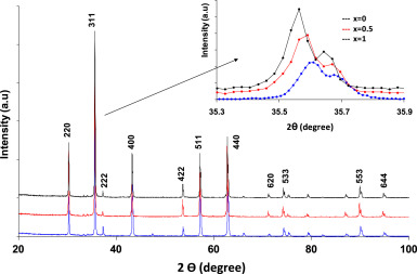 Structural Rietveld refinement and vibrational study of MgCrxFe2