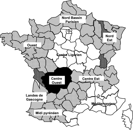 Maintaining The Integrity Of The French Terroir A Study Of Critical