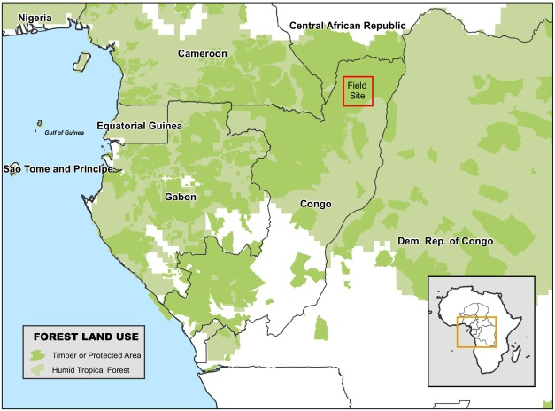 Unintended impacts from forest certification: Evidence from
