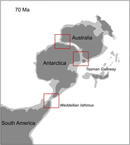 Final Gondwana breakup: The Paleogene South American native ...