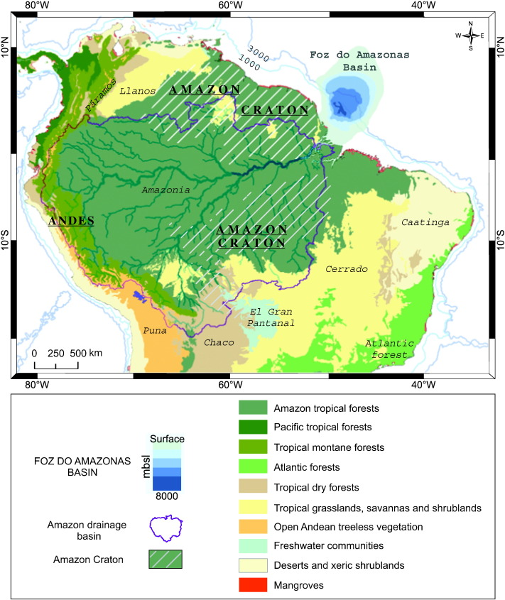 the amazon at sea onset and stages of the amazon river from a marine record with special reference to neogene plant turnover in the drainage basin sciencedirect onset and stages of the amazon river