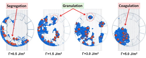 An investigation on process of seeded granulation in a continuous