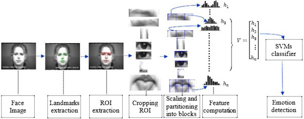 Facial decomposition for expression recognition using texture/shape