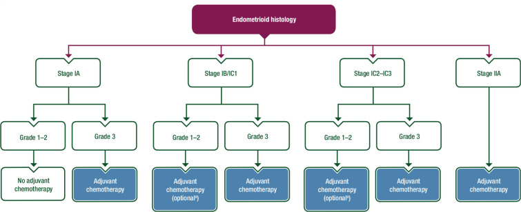Esmo Esgo Consensus Conference Recommendations On Ovarian Cancer Pathology And Molecular Biology Early And Advanced Stages Borderline Tumours And Recurrent Disease Sciencedirect