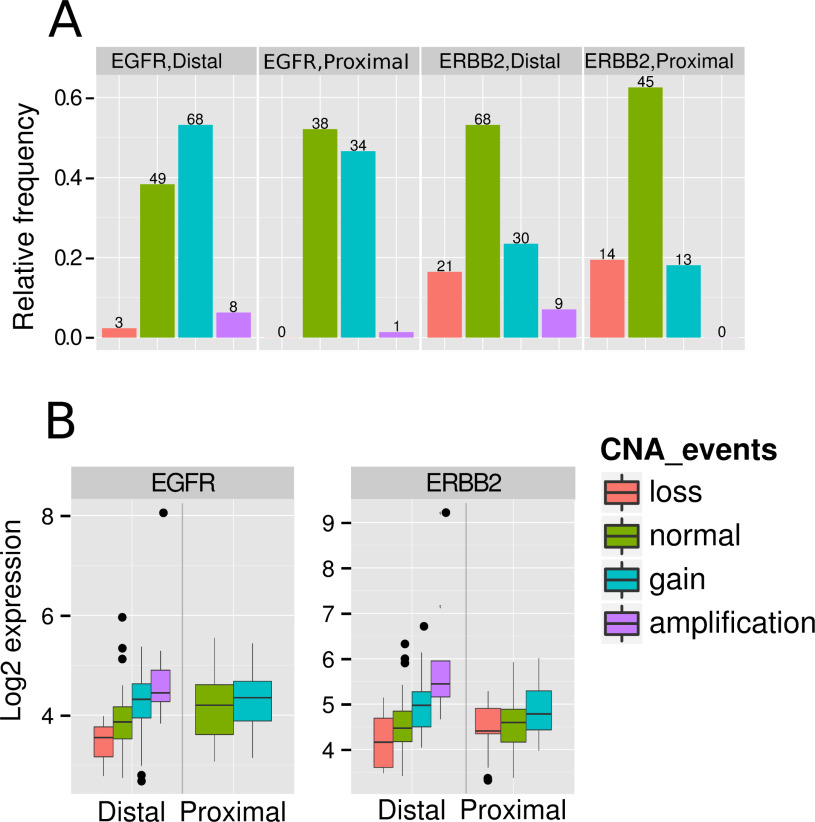 Distal And Proximal Colon Cancers Differ In Terms Of Molecular Pathological And Clinical Features Sciencedirect
